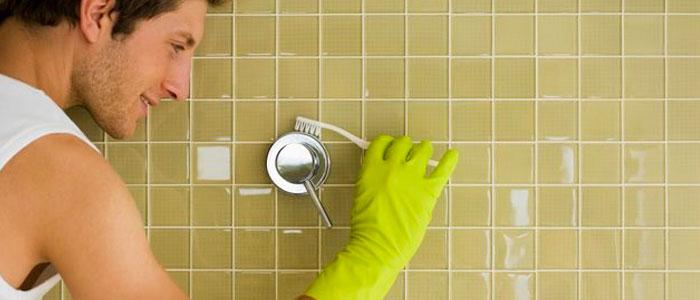 Riesgos a la salud y otros peligros ocasionados por la toxicidad del moho