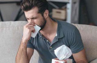 Purificador de aire o deshumidificador para alergias, ¿cuál es mejor