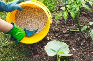Riesgos de un mal control de humedad en el almacenamiento de fertilizantes minerales y vegetales